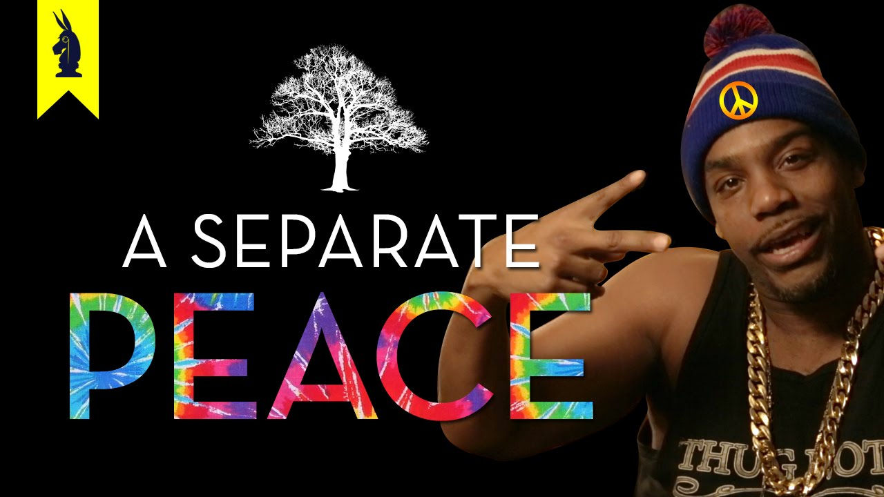 A seperate peace! ESSAY HELP! PLEASE!!!?