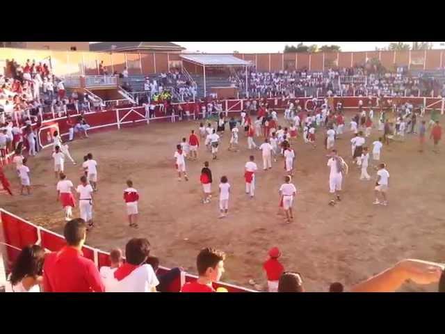 La suelta de perro, éxito de la Feria 2015, Fiestas de Sangüesa