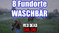8 Waschbär Fundorte Red Dead Redemption 2 Deutsch / German