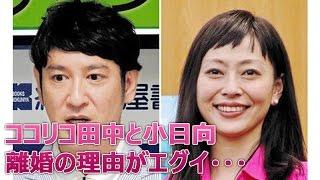 ココリコ田中直樹と小日向しえ離婚理由がヤバイ!浮気か? 楽しめました...