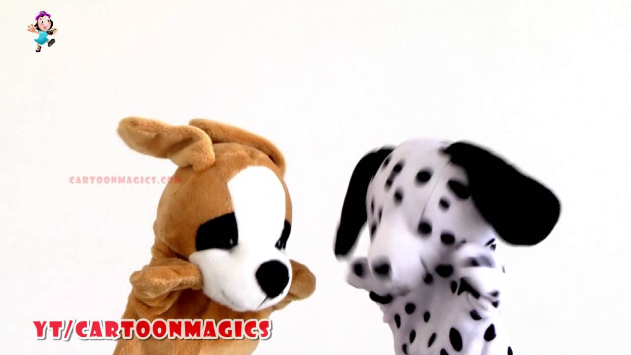 Itsy Bitsy Spider Incy Wincy Spider Puppy Dog Cute Dog Puppets