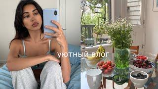 ДЕНЬ В МОЕЙ ЖИЗНИ | Америка Vlog.