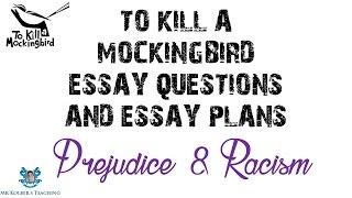 Essays on to kill a mockingbird prejudice and discrimination