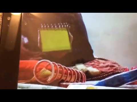 Blues clues notebook sounds part 7