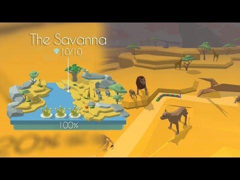 Dancing Line - The Savanna