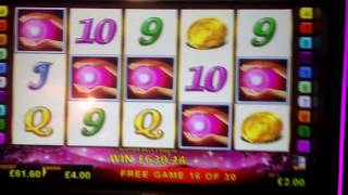 Single £3000 jackpot win during Lucky Lady