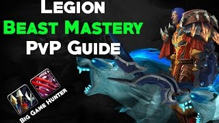brang how i play bm in legion pvp guide