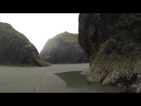 Exploring Low Tide @ Oregon Beach House - 062617