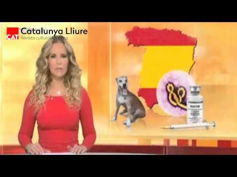 La cadena RTL informa sobre l'ebola a Espanya amb un mapa sense Catalunya