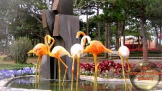 видео Что посмотреть в Дананге