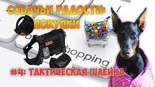 Полезные покупки для собаки: тактическая шлейка/ Dog tactical harness vest