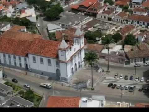 Formiga Minas Gerais fonte: i.ytimg.com