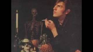 Watch Robyn Hitchcock Midnight Fish video