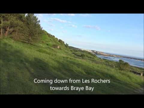 Alderney   Clips of the Dawn Chorus Walk  1st June 2017