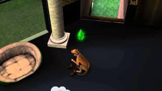Собака рожает в симс 3