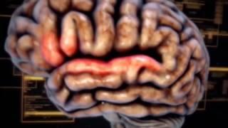 Мозг человека: Тайны разума  / ადამიანის ტვინი: გონის საიდუმლოებები (2016)