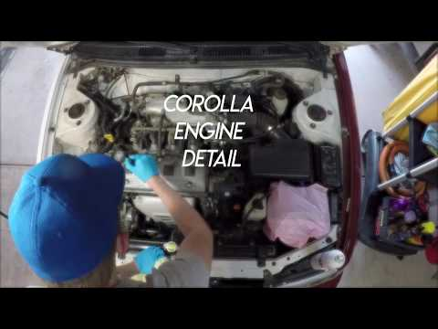 Detailing the Corolla's Engine