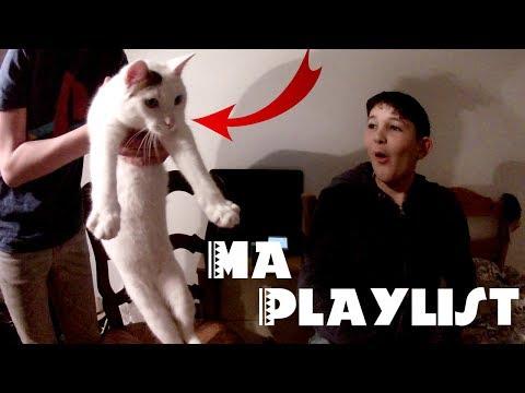 Mon chat veut écouter ma playlist !
