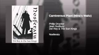Carniverous Plant (Nina