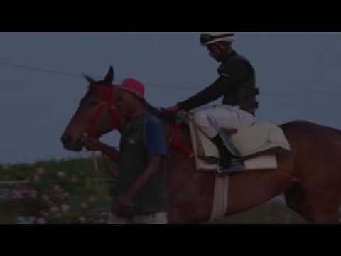 SVREL BOOM Jamaica Derby Features