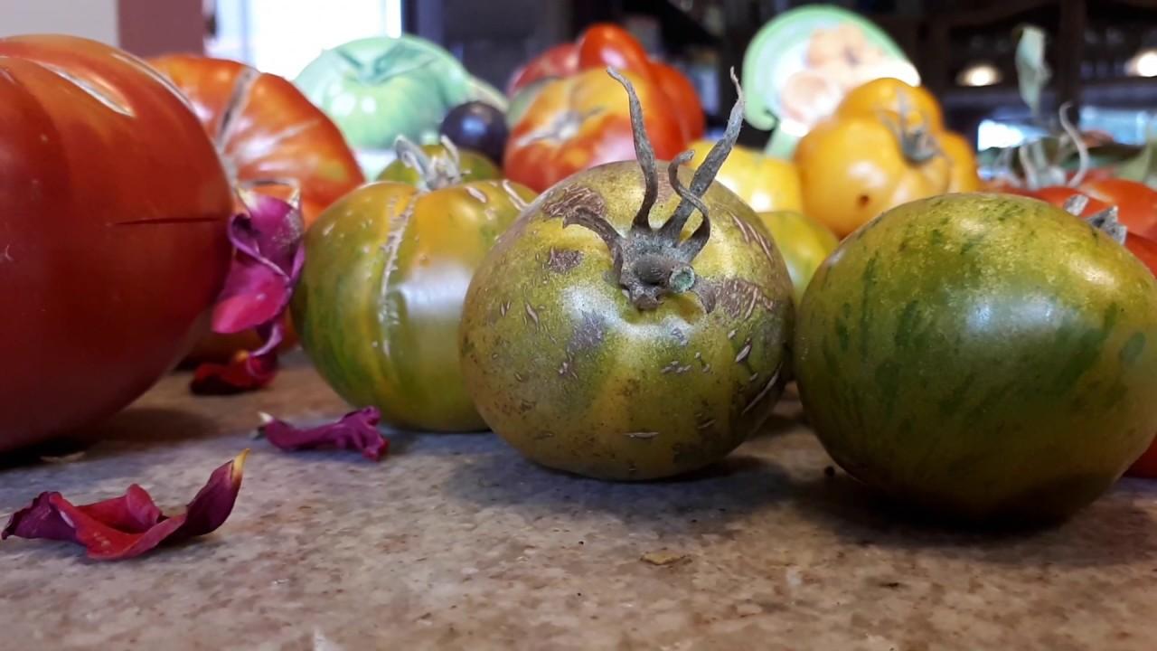 Receta de tomate frito Valentina con tomates de verdad ecológicos y naturales