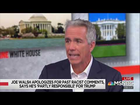Joe Walsh: 'I'm obsessed with the issue of race'