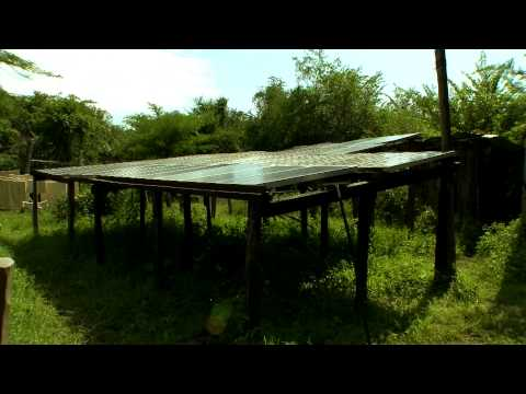Naboisho Community Conservancy, Masai Mara, Kenya: Progress Report