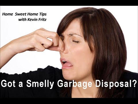 Best 3 Ways to Clean Your Nasty Smelly Garbage Disposal