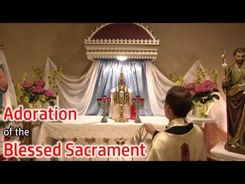 Holy Hour and Adoration of the Blessed Sacrament | Fr. Meyer | Jul 1/2020