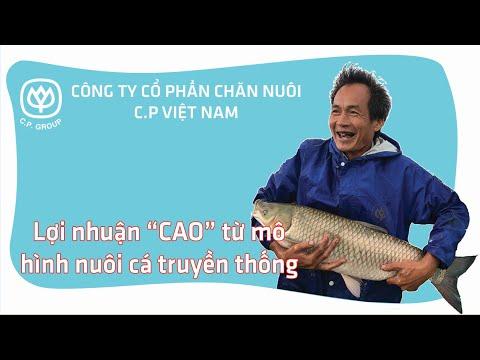 """Lợi nhuận """"Cao"""" từ mô hình nuôi cá truyền thống I CPVN"""