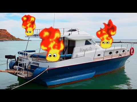 The Boat is