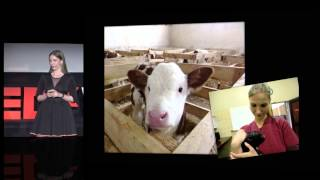 Inter-species communication: Natalia Strokowska at TEDxWarsaw