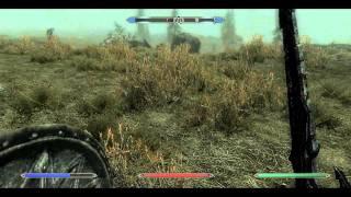 TES V:Skyrim. The dragon vs. mammoth