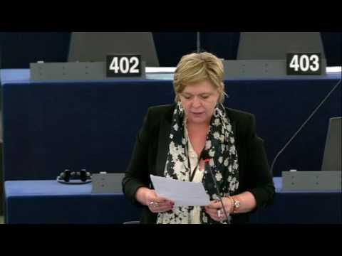 Hilde Vautmans 12 May 2016 plenary speech on Gambia