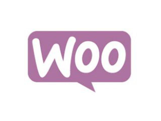 Урок 6. Поиск плагинов для WooCommerce