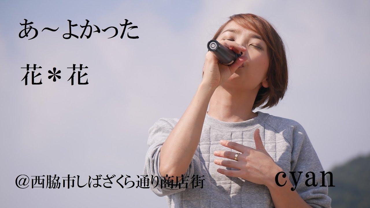 cyan/あ~よかった(カバー)@...