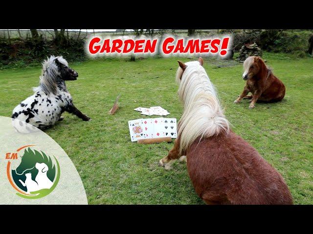 Pony Garden Games