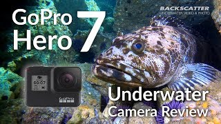 GoPro Hero 7 Underwater Camera Review