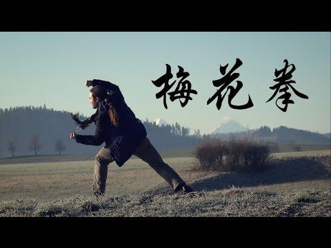 (Shaolin) Meihua Quan 少林梅花拳