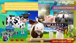 видео Использование туманообразования на животноводческих фермах и птицефабриках
