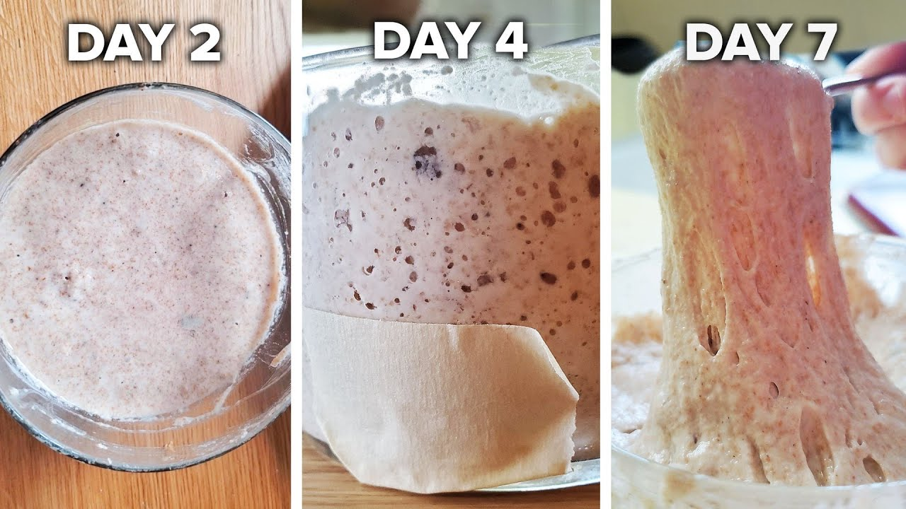 How To Make A Sourdough Starter From Scratch •  Tasty