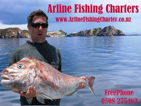 Bay of Islands, Snapper, Fishing, New Zealand