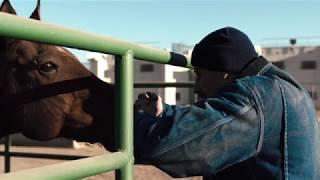 'The Mustang' [2019] Soundtrack By  Jed Kurzel