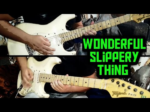 Guthrie Govan - Wonderful Slippery Thing ( cover )