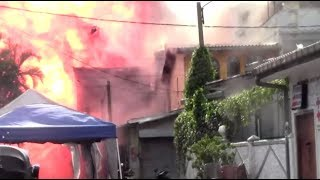 Месть за атаки в Новой Зеландии: кто мог устроить теракты на Шри-Ланке
