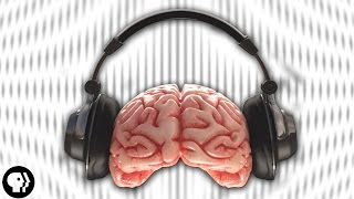 One of BrainCraft's most viewed videos: 4 Weird Audio Illusions!