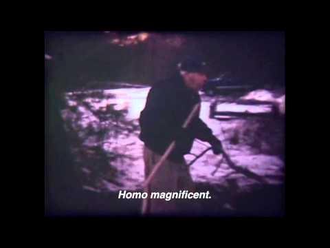 Magical Universe (2014)  - Homo Magnificent