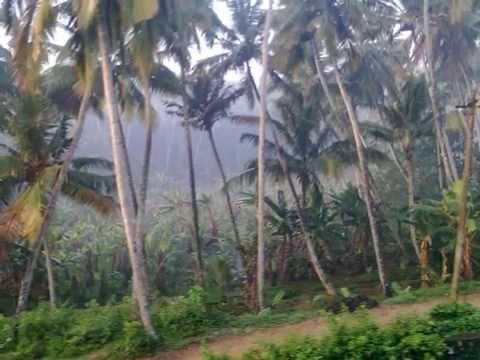 City of Kerala,India