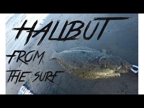 Surf Fishing Southern California's Halibut