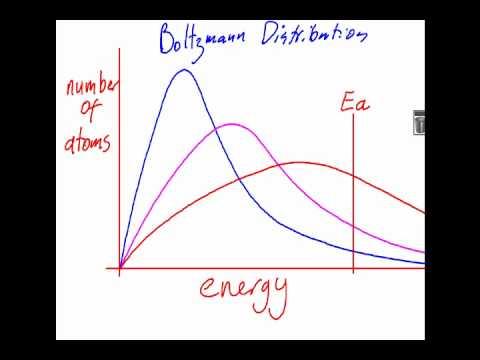 6.1 Boltzmann Distribution and Catalysis [SL IB Chemistry]